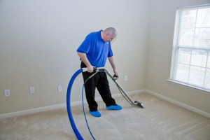 Why Remove Non-Deadly Mould? - Amity Environmental Inc - Mold Testing and Removal Calgary