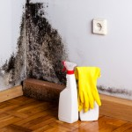 Reasons Why Mould & Asbestos are Scary! - Amity Environmental - Mould and Asbestos Experts Calgary