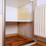 3 Mould Myths to be Wary Of - Amity Environmental - Mold Removal Calgary