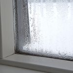 Does Mould Grow During Winter? - Amity Environmental - Calgary Mold Removal Experts